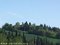 Castello di Oliveto, nel Pian Grande vicino Certaldo